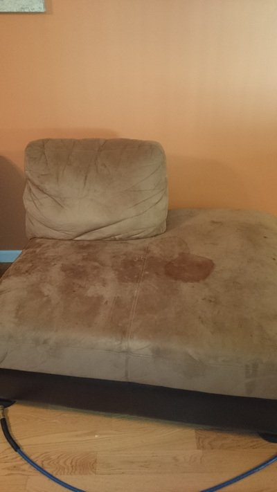 Upholstery cleaning Services In hamilton Township