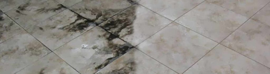 Tile Ground Cleaning Services nj1